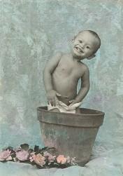 little boy in flower pot